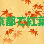 京都で紅葉狩りならここ!紅葉の見頃と京都の紅葉が美しい理由を紹介
