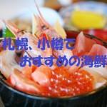 札幌,小樽,コスパ,海鮮グルメ,おすすめ,海鮮料理